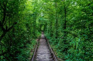 تونل عشق-کی یف